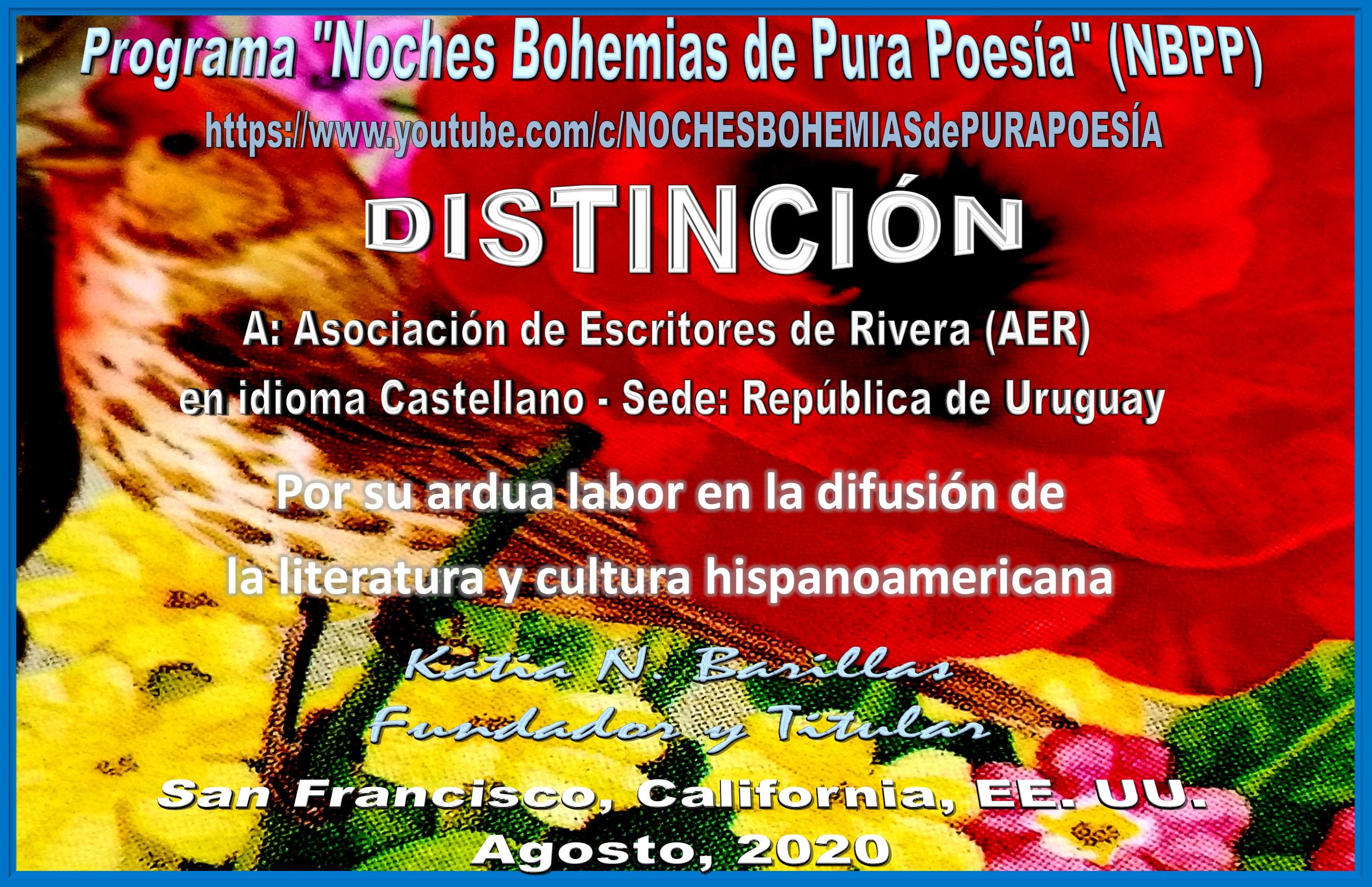 DISTINCIÓNnbppAER.jpg