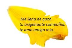 pétalos-amarillos-del-tulipán-10386695 - copia.jpg
