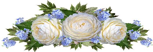 rosa blanca.png