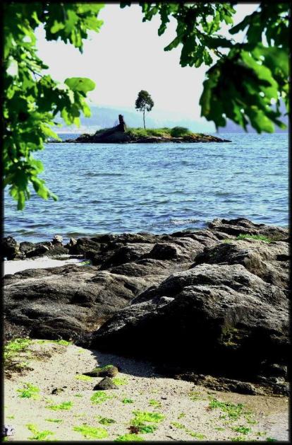 Salvador-Illa-dos-Ratos.png