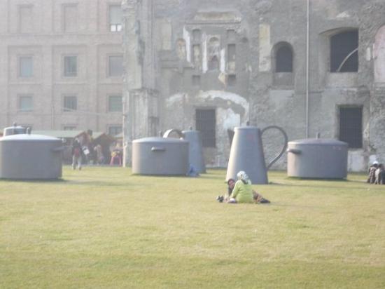 teacups-inthe-park.jpg